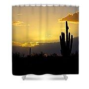 A Saguaro Sunset  Shower Curtain