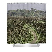 A Small Path Through Very Tall Grass Inside The Okhla Bird Sanctuary Shower Curtain