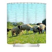 A Summerday Shower Curtain