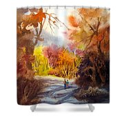 A Walk In The Fall Shower Curtain