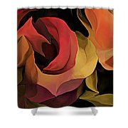 Abstract 071713 Shower Curtain