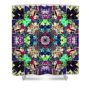 Abstract Symmetry Of Colors Shower Curtain