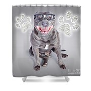 Access To Smart Dog Training Shower Curtain