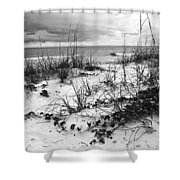 After The Storm Bw Shower Curtain
