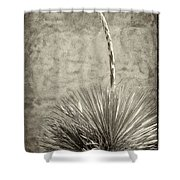 Agave And Adobe Shower Curtain