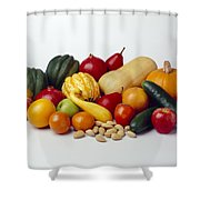 Agriculture - Autumn Fruits Shower Curtain