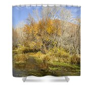 Alpine Loop Scenic Byway American Fork Canyon Utah Shower Curtain
