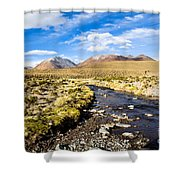 Altiplano In Bolivia Shower Curtain