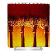Amber Grains 2 Shower Curtain