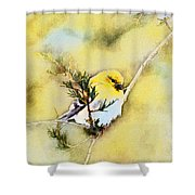 American Goldfinch - Digital Paint Shower Curtain