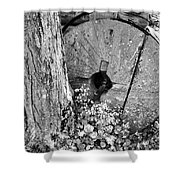 An Old Mill Stone Ely's Mill Roaring Fork Bw Shower Curtain