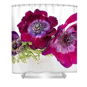 Anemone Trio Shower Curtain