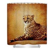 Animal Portrait Shower Curtain
