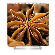 Anise Star Shower Curtain