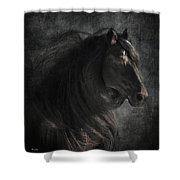 Anton 343 Shower Curtain