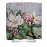 Apple Blossom Shower Curtain