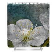 Apple Blossom Photoart Vi Shower Curtain