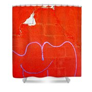 Art Homage Joan Miro Picacho Arizona 2005 Shower Curtain