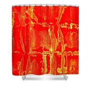 Art Homage Mark Rothko 1 Arizona City Arizona 2005 Shower Curtain