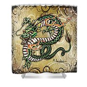 Asian Dragon Shower Curtain