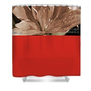 Asiatic Lily Named Red Twin Shower Curtain