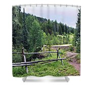 Aspen Trees In Vail - Colorado Shower Curtain