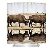 At The Waterhole V2 Shower Curtain