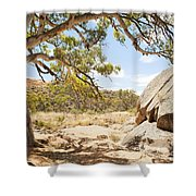 Australian Outback Oasis Shower Curtain