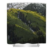 Autumn Angles Shower Curtain