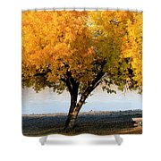 Autumn At The River Shower Curtain