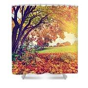 Autumn Fall Park Shower Curtain