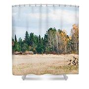 Autumn Field Shower Curtain