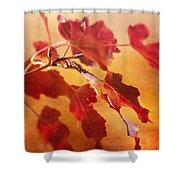 Red Blaze Shower Curtain