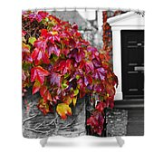 Autumn Ivy Shower Curtain