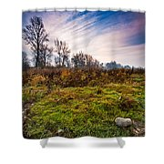 Autumn Morning Shower Curtain by Davorin Mance