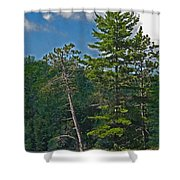 Away From It All Shower Curtain