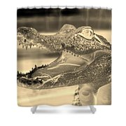 Baby Gator Neg Dark Sepia Shower Curtain