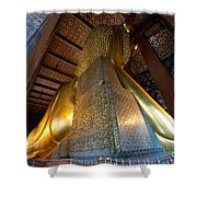 Back View Of Reclining Buddha Shower Curtain