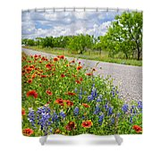 Backroad Beauty Shower Curtain