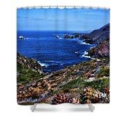 Baja Coast Shower Curtain
