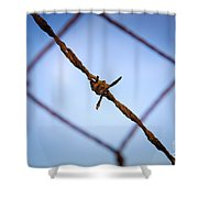 Barbed Wire Shower Curtain