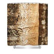 Bark Of A Tree Shower Curtain