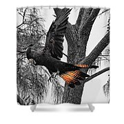 Base Jumper Shower Curtain