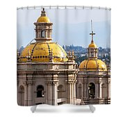 Basilica Towers Shower Curtain