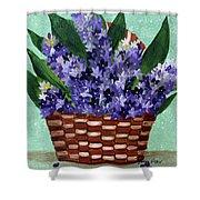 Basket Of Hyacinths  Shower Curtain