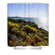Bass Strait Ocean Landscape In Tasmania Shower Curtain