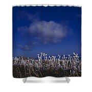 Beartooth Mountain Frost Shower Curtain