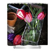 Beautiful Spring Tulips Shower Curtain