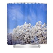 Beautiful Winter Landscape Shower Curtain