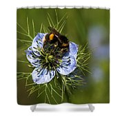 Bee Collecting Pollen Shower Curtain